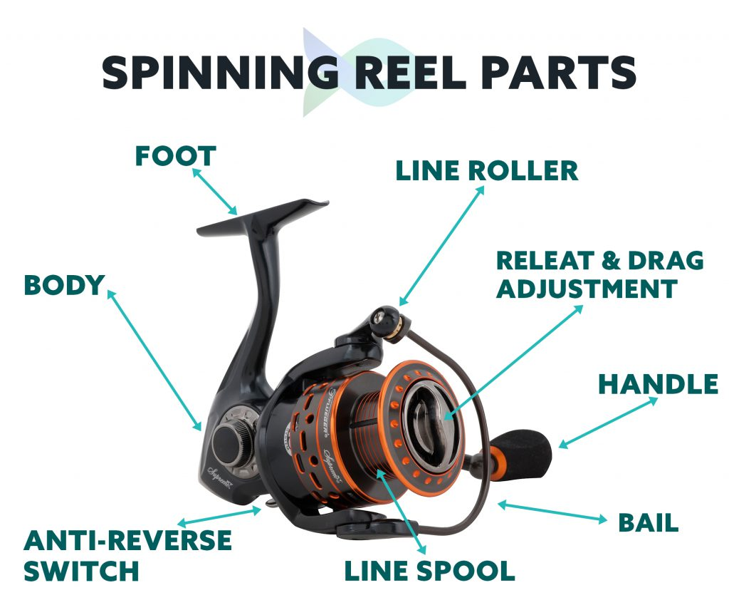 8 Parts Of A Spinning Reel (Quick Guide For Beginners) 1